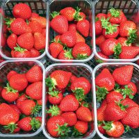 Strawberris